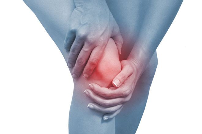 knee pain specialist